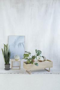 kristina-dam-studio-collection-design-graphis-L-owY5IH